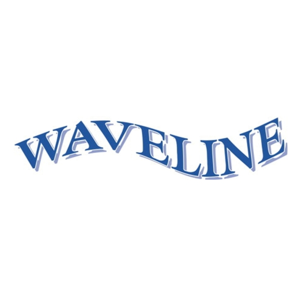 Waveline Pontoon ladder SSI316 2 step 90MM crook